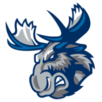 MooseHockey