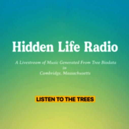 Hidden Life Radio Location 3